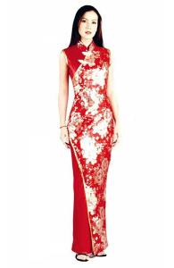 Asian Style Long Dress